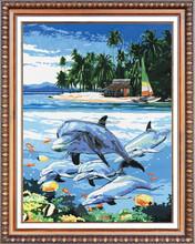 certificate dolphin 5d diy diamond painting