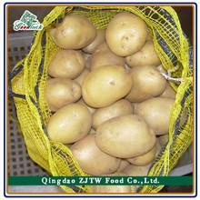 2014 new cropped fresh mature holland potato