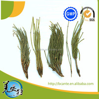 Dried ma huang ephedra leaves mahuang top quality
