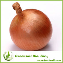 2014 Chinese competitive onion seeds price