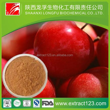 Health food apple fruit extract powder