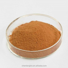 Herbal Plant Extract Pollution-free Honeysuckle Extract Chlorogenic Acid