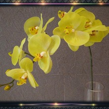 real touch artificial orchid leaf wholesale