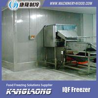 2000Kg/h Cherry frozen food equipment