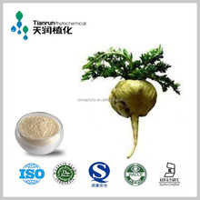 Maca root extract 100% pure natural health supplement since 1998 to now manufacturer