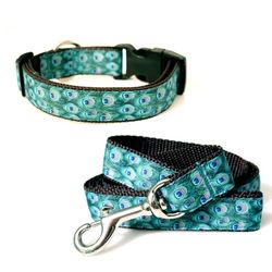 Peacock nylon dog collar and leash