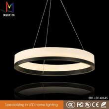 Professional with CE certificate led ring lamp