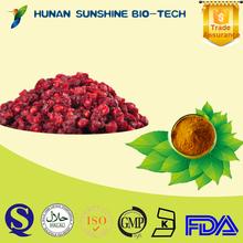 Chinese Liver-protecting herb medicine schisandra chinensis p.e/ 5% schizandrin schisandra extract