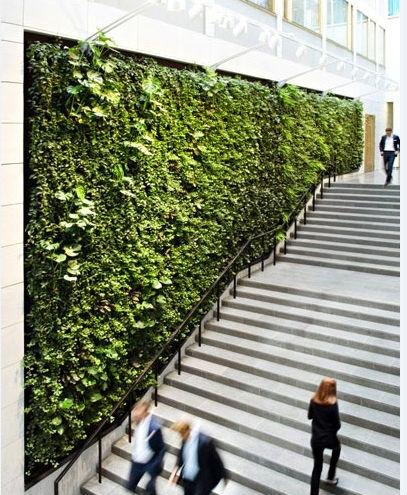 Artificiale muro vegetale in alta qualit con basso prezzo for Pianta di bosso prezzo