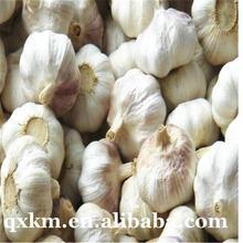 Brand new 5.0cm fresh garlic natural white garlic with high quality