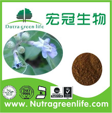 High Quality Chasteberry Extract