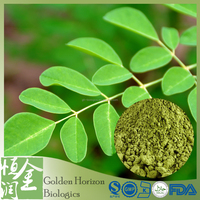 High Quality 100% Natural Moringa Powder Leaf