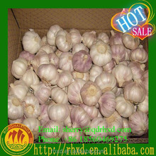 Natural Garlic Red Garlic Fresh Garlic