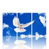 Peace Bird Stretched Canvas Printing/Home Decoration Items/Modern Chinese Wall Art Painting