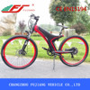 2015 FJ-TDA11 electric bike 29 inch 250w,electric motor bike home