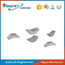 Irregular Shape Permanent Magnet Used Mini Craft