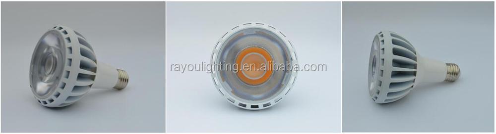 COB-LED-PAR30-30W-25W-20W-No-fan