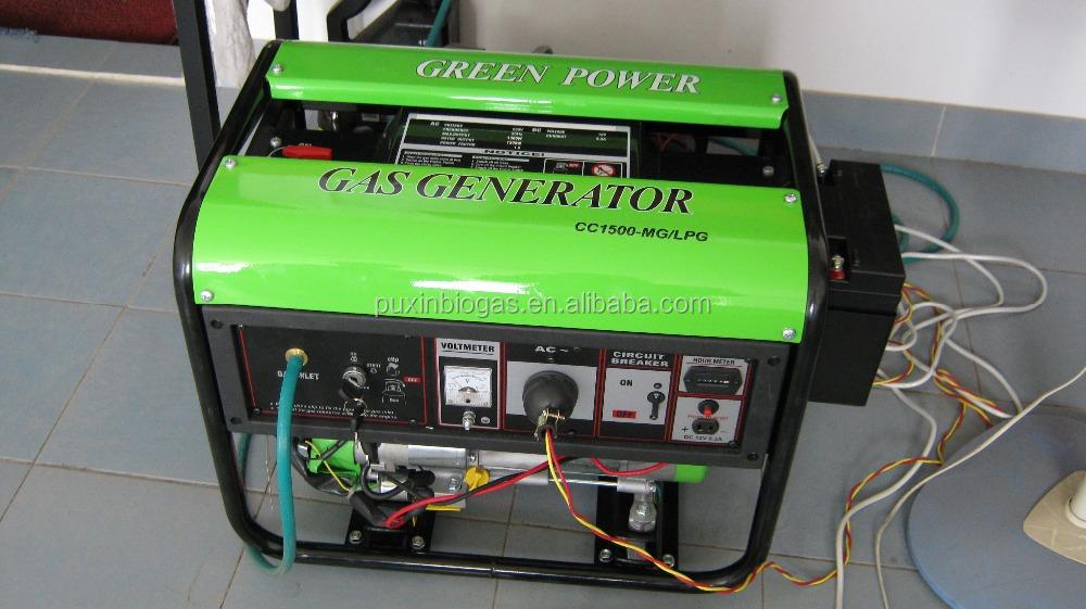 biogas generator(1)