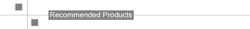 Recommended Products.jpg