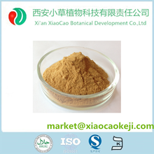 Top Quality Fenugreek Extract Trigonelline Powder for Weight loss Functions