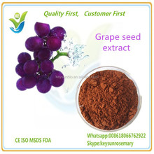 Grape seed extract, 98% Proanthocyanidins (OPC)