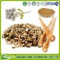 China alibaba proveedor de oro frescas de calidad superior de raíz de bardana/arctigenin/bardana aquenio extracto