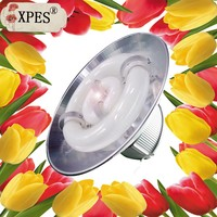 Floriculture grow light planting tulip flower plant light sale