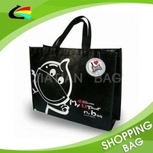 Eco Recycle PP Woven Customized Promotional Shopping Bag