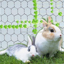 Hexagonal wire mesh/anping hexagonal mesh/chicken wire mesh