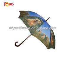 High Quality umbrella for dog, Fashion umbrella for dog