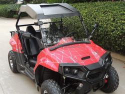 EPA Approved China 2x4 dune buggy 200cc kids utility vehicle