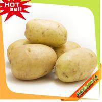 NEW CROP!!! Cheap Prices non-gmo potatoes 2014 wholesale