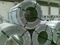 Cold rolled/hot rolled 309s stainless steel coils