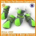 jml caliente de la venta al por mayor precio de fábrica de transpirable de arranque zapatos para perros