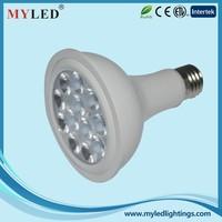 SMD New Par 30 light 12w E27 LED Par Light LED Spotlight Lamps