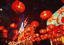 0524-14 Chinese New Year Lantern red outdoor festival decoration
