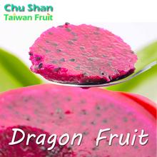2015 Taiwan Fresh Dragon fruit
