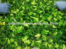 2012 IQF Frozen Broccoli