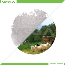 Dog Feed Rumen protected methionine/Company Rumen-Protected Methionine 50% Granule