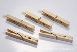 Dalian No Metal Clothes Pegs, Made in China