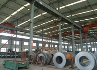 Prime Quality Hot Rolled Steel