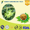 wholesale 100% natural Tribulus Terrestris Extract./90% Saponins as Lowering blood-fat function