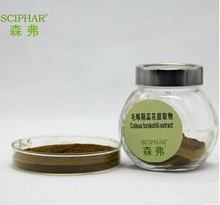 Supply 10%,20%,40%Forskohlin Coleus Forskohlii Extract