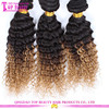 New Product For 2015 China hair factory Supply #1b/#27 blonde ombere Brazilian Hair china suppliers