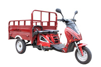 CKD 3 three wheel motorcycle ANGEL,110cc tricycle