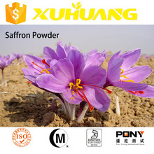 factory price saffron dubai/saffron price/saffron powder