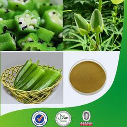 okra extract 10:1, okra extract powder ,Dried Okra powder