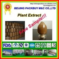 Top Quality From 10 Years experience manufacture chia seed extract
