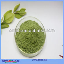 Factory price Wheat Grass Powder 100% natural