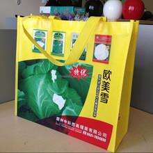 Factory Made Fashion Design PP Non-Woven Bag